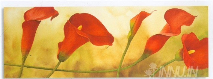 Buy Fine art painting Calla Lilly  by Artist Unknown Artist