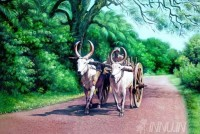 Fine art  - Old man riding bullock cart by Artist