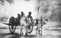 Fine art  - Bullock cart by Artist Mahesh