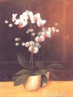 Fine art  - Summer Blossomby ArtistFranz Heigl
