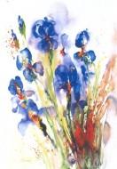 Fine art  - Iris Flowerby ArtistJ Hammerle