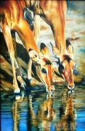 Fine art  - Two Horses by ArtistRajasekharan Parameswaran