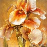 Fine art  - Golden Iris  by ArtistDennis Carney