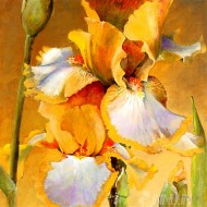 Fine art  - Golden Iris 2 by Artist Dennis Carney
