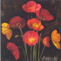 Fine art  - Poppy Bouquet 1 by Artist Jhon Seba