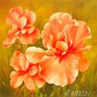Fine art  - Summer Flair  by ArtistFasani