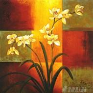 Fine art  - Orchid Flowers
