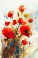 Fine art  - Mohnby ArtistJ Hammerle