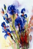 Fine art  - Iris by ArtistJ Hammerle