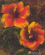 Fine art  - Hibiscus 1 by ArtistJhon Seba