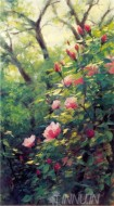 Fine art  - Blossom Roses