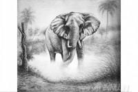 Fine art  - Elephant