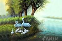 Fine art  - Natural Beauty