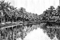 Fine art  - Lake View