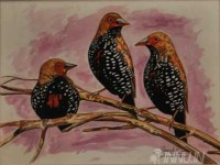 Fine art  - Birds by Artist Suresh Dev