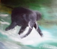 Fine art  - Elephant playing in a river by Artist Usha Ramachandran