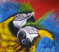 Fine art  - Couple Parrot by Artist Dinak Divakaran