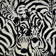 Fine art  - Zebra Herd by ArtistSai Kumar
