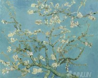 Fine art  - Almond Blossoms by Artist Vincent Van Gogh