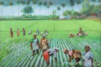 Fine art  - Nel koyithu - Paddy fieldby ArtistMartin