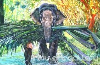 Fine art  - Elephant by Artist Martin